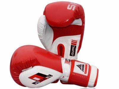Боксёрские перчатки jiuduanlong.