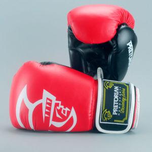 Боксёрские перчатки PRETORIAN.